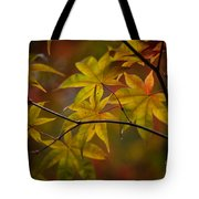 Tranquil Collage Tote Bag by Mike Reid