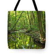 Tranquility In The Forest Tote Bag by Adam Jewell