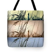 Transitions Tote Bag by Laurie Perry
