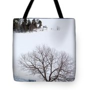 Tree And The Point In Winter Tote Bag by Rob Huntley