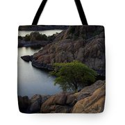 Tree At Sunset At The Granite Dells Arizona Tote Bag by Dave Dilli