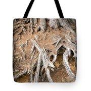 Tree Root Tote Bag by Matthias Hauser