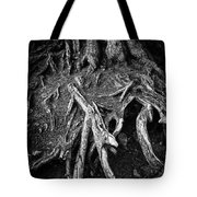 Tree Roots Black And White Tote Bag by Matthias Hauser