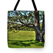 Tree with a Swing Tote Bag by Kaye Menner