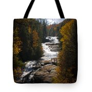 Triple Falls Tote Bag by Penny Lisowski
