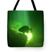 Tropical Fish Shilouette In A Cenote Tote Bag by Halifax photography by John Malone