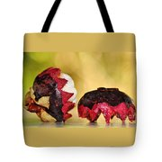 Tropical Mangosteen Tote Bag by Kaye Menner