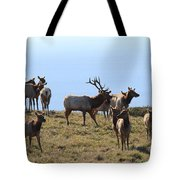 Tules Elks of Tomales Bay California - 7D21236 Tote Bag by Wingsdomain Art and Photography