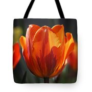 Tulip Prinses Irene Tote Bag by Rona Black