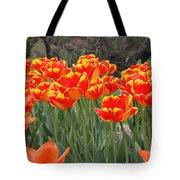 Tulips From Brooklyn Tote Bag by John Telfer