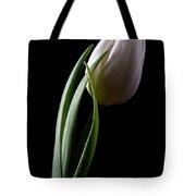 Tulips III Tote Bag by Tom Mc Nemar