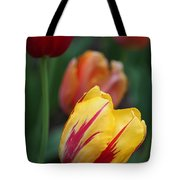 Tulips On Fire II Tote Bag by Suzanne Gaff