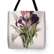 Tulips Tote Bag by Pierre Joseph Redoute