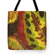Turning Leaves 3 Tote Bag by Stephen Anderson