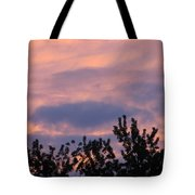 Twilight Beauty Tote Bag by Sonali Gangane