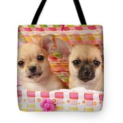 Two Chihuahuas Tote Bag by Greg Cuddiford