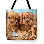 Two Puppies in Woven Basket DP709 Tote Bag by Greg Cuddiford