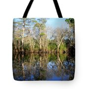 Ultimate Reflection Tote Bag by Debra Forand