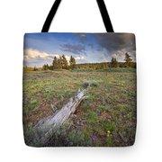 Under Stormy Skies Tote Bag by Mike  Dawson