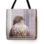 Urban Red-tailed Hawk Tote Bag by Rona Black