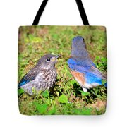 A Mothers Care Tote Bag by David Lee Thompson