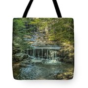 Vaughan Woods Stream Tote Bag by Jane Luxton