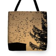 Vaux's Swifts In Migration Tote Bag by Garry Gay
