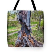 Vibrant And Burnt Out Tote Bag by Omaste Witkowski