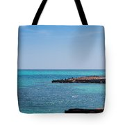 View Through The Walls Of Fort Jefferson Tote Bag by John M Bailey