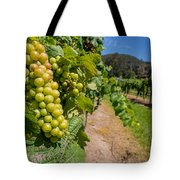 Vineyard Grapes Tote Bag by Justin Woodhouse