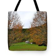 Virginia Fall Tote Bag by Todd Hostetter