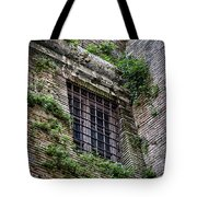 Waiting In Line For The Dome Tote Bag by Joan Carroll