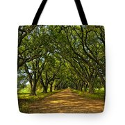 Walk With Me Tote Bag by Steve Harrington