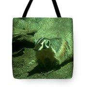Wandering Badger Tote Bag by Jeff Swan