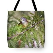 Warbler In The Cypress Tote Bag by Deborah Benoit