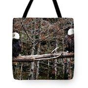 Watchful Eyes Tote Bag by Elizabeth Winter