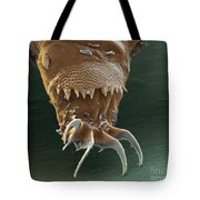 Water Bear Leg Tote Bag by Eye of Science and Science Source