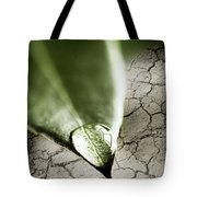 Water Drop On Green Leaf Tote Bag by Elena Elisseeva