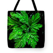 Water Drops Tote Bag by Robert Bales