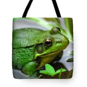 Water Garden Tote Bag by Christina Rollo