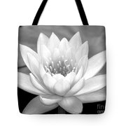 Water Lily In Black And White Tote Bag by Sabrina L Ryan