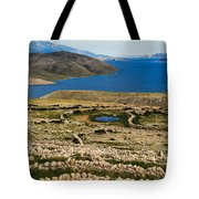 Watering Place Tote Bag by Davorin Mance