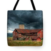 Weathering The Storm Tote Bag by Lori Deiter