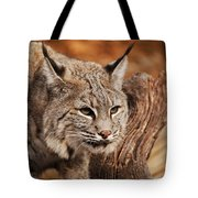 What A Face Tote Bag by Lori Tambakis