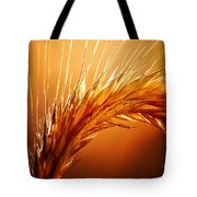 Wheat Close-up Tote Bag by Johan Swanepoel