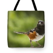 Where am I Tote Bag by Jean Noren
