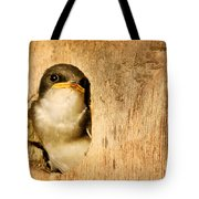 Wheres Dinner Tote Bag by Jean Noren