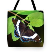 White Admiral Butterfly Tote Bag by Christina Rollo