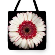 White And Red Gerbera Daisy Tote Bag by Adam Romanowicz