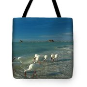 White Ibis Near Historic Naples Pier Tote Bag by Juergen Roth